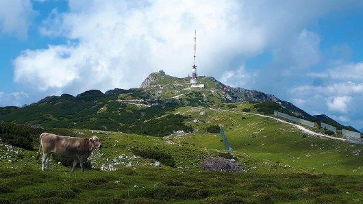 dobratsch-villacher-alpe-wandern-sommer