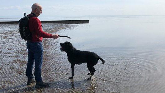 grado-strand-hund-mann-meer