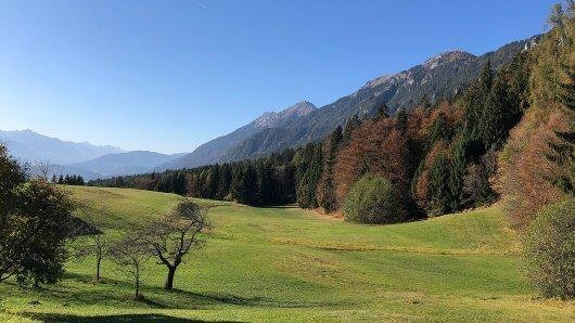 landschaft-kaernten-wiese-wald-berge