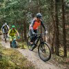 mountainbike-area-one-wald